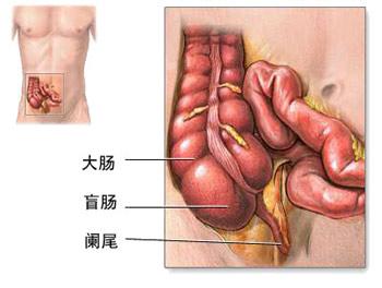 """胃肠手术后的""""食疗方"""""""