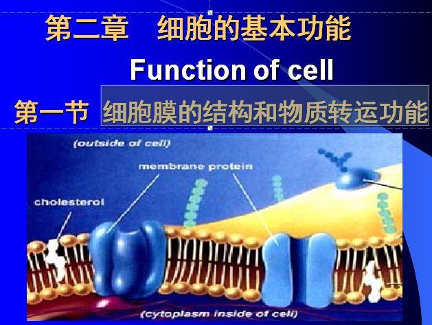 细胞膜的结构和物质转运功能