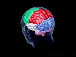 部分人群未催眠就能产生颜色幻觉
