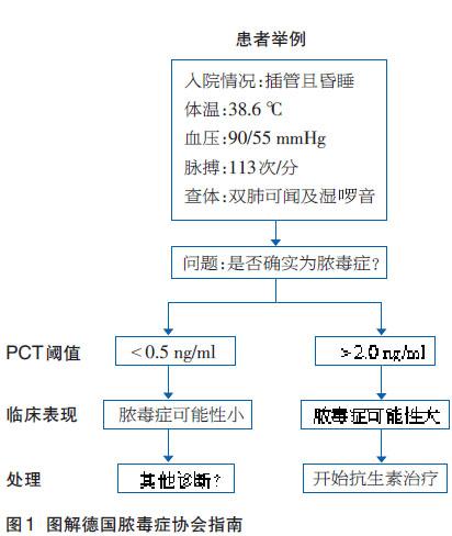 降钙素原:脓毒症和抗生素管理标志物