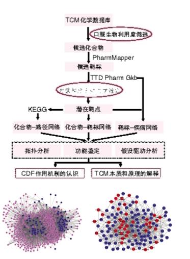 复方丹参方心血管作用机制系统药理学研究